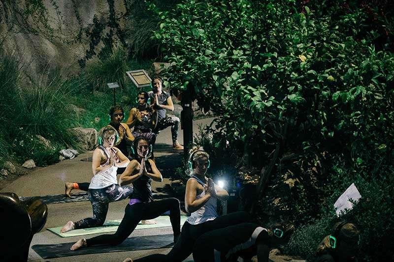 Twilight Eden Project Silent Disco Yoga
